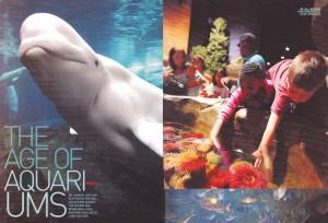 AW Aquariums-1