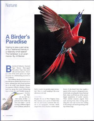 birders-paradise