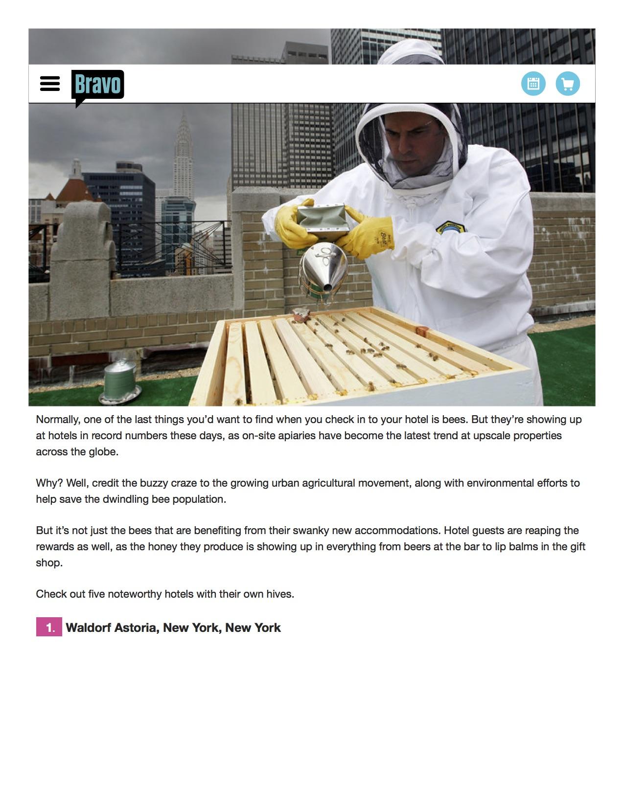 BravoTV Beehives