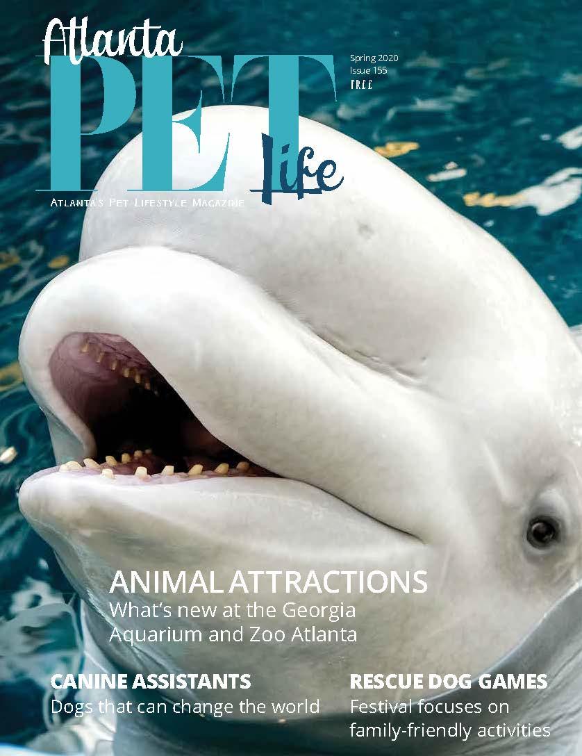 ATL Pet Life Spring 2020 cover